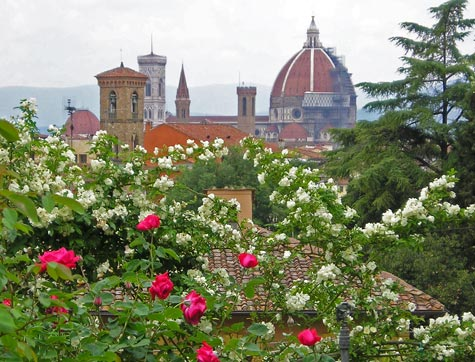 Rose Garden in Florence Italy